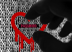 Heartbleed - These Sites Tell Which Of Your Accounts Have Been Hacked
